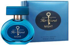 Antonio Banderas Her Secret Night